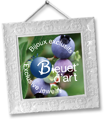 logo bleuet